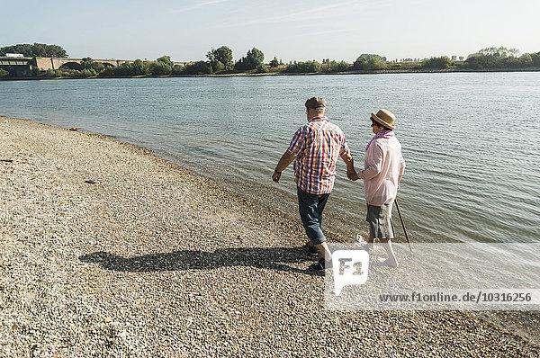 Deutschland  Ludwigshafen  Seniorenpaar  die Hand in Hand am Flussufer gehen