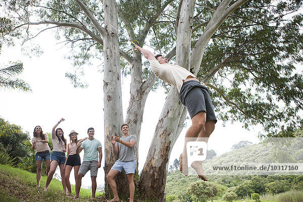 Group of friends cheering while teenager swinging at a tree