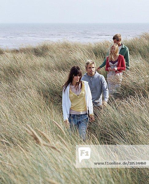 Gruppe von Freunden  die durchs Feld laufen