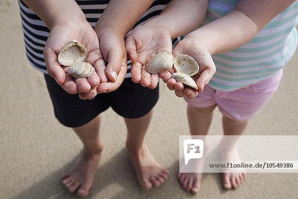 Zwei Kinder mit Händen  die Muscheln halten.