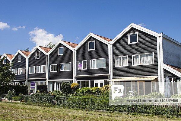 Mit Schindeln verkleidete Häuser in einem Vorort von Haarlem  Niederlande  Europa