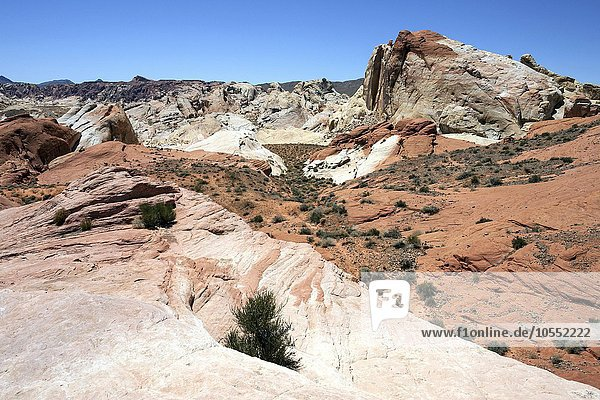 Farbige Sandsteinformationen,  Valley of Fire State Park,  Nevada,  USA,  Nordamerika