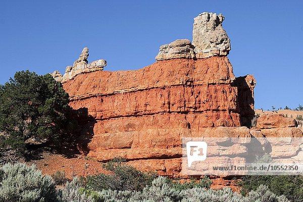 Gesteinsformationen durch Erosion  Red Canyon  Utah  USA  Nordamerika