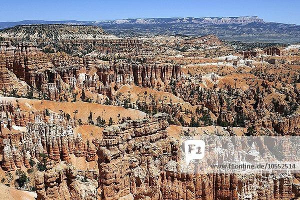Ausblick am Sunset Point auf farbige Gesteinsformationen  Hoodoos  Bryce-Amphitheater  Bryce-Canyon-Nationalpark  Utah  USA  Nordamerika