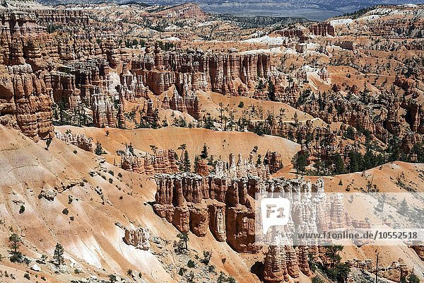 Ausblick am Sunset Point auf farbige Gesteinsformationen  Hoodoos  Bryce-Amphitheater  Bryce-Canyon-Nationalpark  Utah  USA  Nordamerika