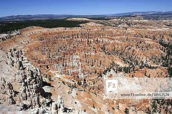 Ausblick am Bryce Point auf farbige Gesteinsformationen  Hoodoos  Bryce-Amphitheater  Bryce-Canyon-Nationalpark  Utah  USA  Nordamerika