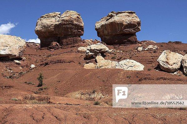 Gesteinsformationen im Capitol Reef Nationalpark  Utah  USA  Nordamerika