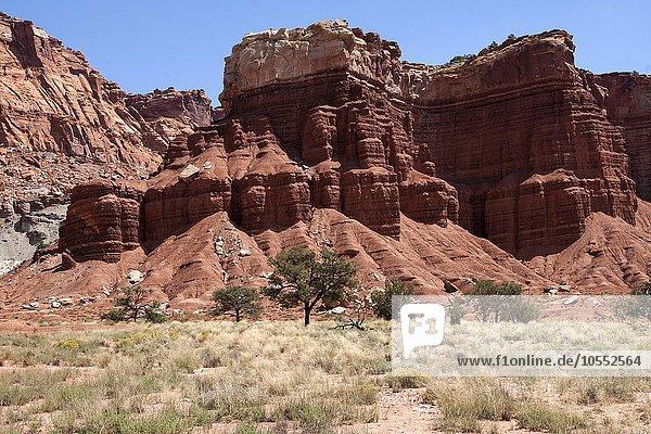 Landschaft und Gesteinsformationen im Capitol Reef Nationalpark  Utah  USA  Nordamerika
