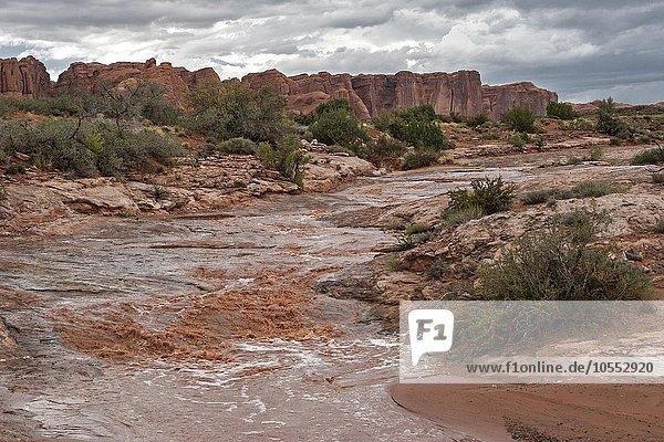 Wasserlauf nach einem straken Gewitter  Gewitterstimmung  hinten The Great Wall  Arches National Park  bei Moab  Utah  USA  Nordamerika