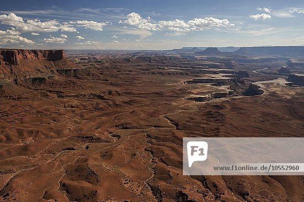 Ausblick vom Green River Overlook auf Erosionslandschaft  Canyons  Island of the Sky  Canyonlands-Nationalpark  Utah  USA  Nordamerika
