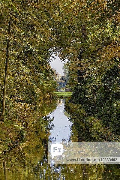 Park mit Venustempel im Herbst  Dessau- Wörlitzer Gartenreich  bei Wörlitz  Sachsen-Anhalt  Deutschland  Europa