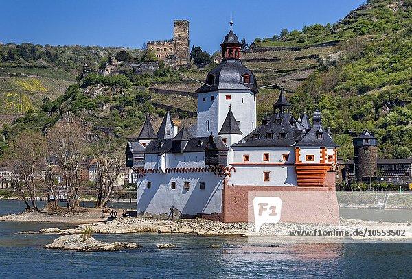 Burg Pfalzgrafenstein auf der Insel Falkenau im Rhein  UNESCO-Weltkulturerbe  Rheinland Pfalz  Deutschland  Europa