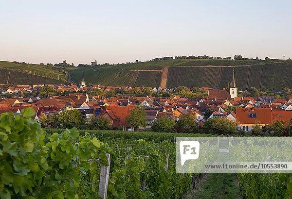 Nordheim am Main und hinten Escherndorf,  Volkacher Mainschleife,  Mainfranken,  Unterfranken,  Franken,  Bayern,  Deutschland,  Europa