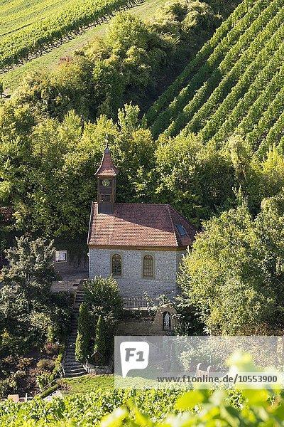 Lourdeskapelle in Escherndorf  Gemeinde Volkach  Mainfranken  Unterfranken  Franken  Bayern  Deutschland  Europa