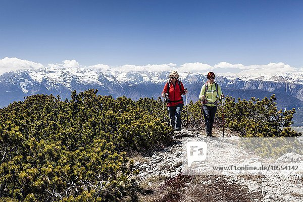 Hiker on the summit of Wiggerspitz  Cima Rocca Piana  overlooking the Val di Non and on Brenta  Trentino Province  Region of Trentino-Alto Adige  Alps  Italy  Europe