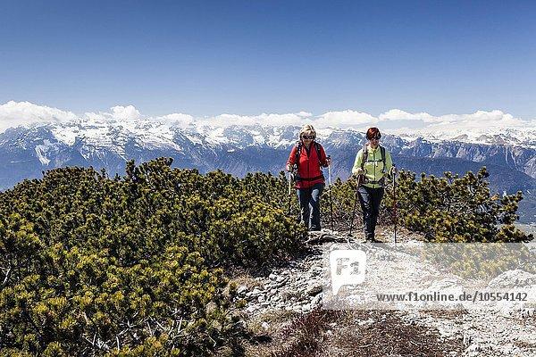 Wanderer auf dem Gipfel der Wiggerspitz  Cima Roccapiana  Blick ins Nonstal und auf Brentagruppe  Trentino  Trentino-Südtirol  Alpen  Italien  Europa