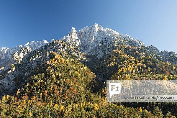 Großer Ödstein im Herbst  Nationalpark Gesäuse  Steiermark  Österreich  Europa