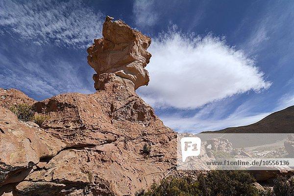 Eroded rock pinnacle  Valle de las Rocas  rocky valley  Uyuni  Altiplano  border triangle  Bolivia  Argentina  Chile  South America