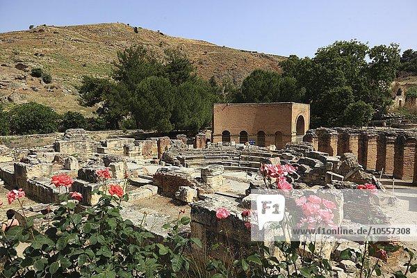 Ausgrabungsstätte Gortyn  Kreta  Griechenland  Europa