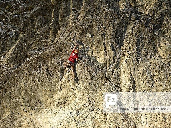 Kletterer im Vorstieg an einer Felswand  Martinswand  Zirl  Tirol  Österreich  Europa Kletterer im Vorstieg an einer Felswand, Martinswand, Zirl, Tirol, Österreich, Europa