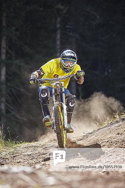 Mountainbiker  Downhill Biker fährt einen Downhilltrail  Mutterer Alm  Muttereralmpark  Mutters  Tirol  Österreich  Europa Mountainbiker, Downhill Biker fährt einen Downhilltrail, Mutterer Alm, Muttereralmpark, Mutters, Tirol, Österreich, Europa