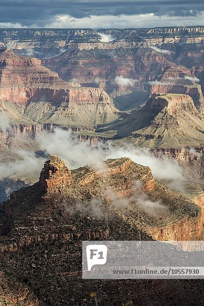 Clouds in the Grand Canyon  Grand Canyon National Park  Arizona  United States  North America