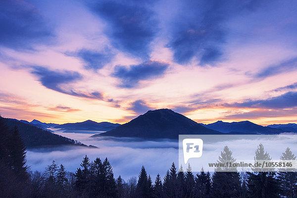 Sonnenaufgang über Salzburger Alpen  Osterhorngruppe und Tennengebirge  Flachgau  Salzburger Land  Österreich  Europa
