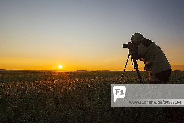 Ländliches Motiv ländliche Motive Mann Sonnenuntergang mischen fotografieren Mixed