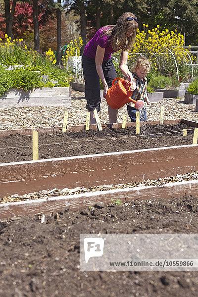 Wasser Europäer Sohn Pflanze Garten Mutter - Mensch
