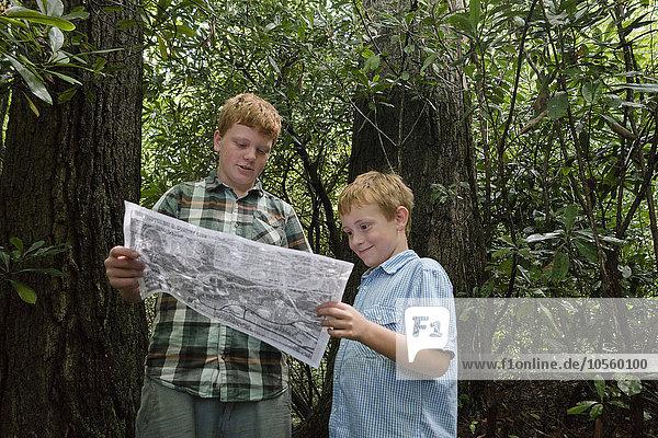 Europäer Junge - Person Wald Landkarte Karte vorlesen