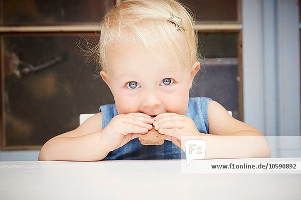 Porträt eines süßen blonden Mädchens  das in die Kamera schaut und Schokoladenplätzchen isst. Porträt eines süßen blonden Mädchens, das in die Kamera schaut und Schokoladenplätzchen isst.