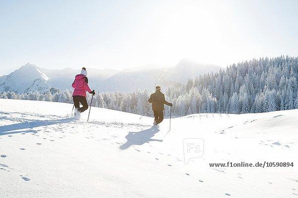 Rückansicht des Seniorenpaares mit Wanderstöcken auf verschneiter Landschaft  Sattelbergalm  Tirol  Österreich
