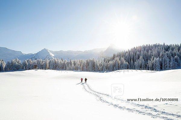 Schneespuren von Seniorenpaaren zu Bäumen und Bergen  Sattelbergalm  Tirol  Österreich