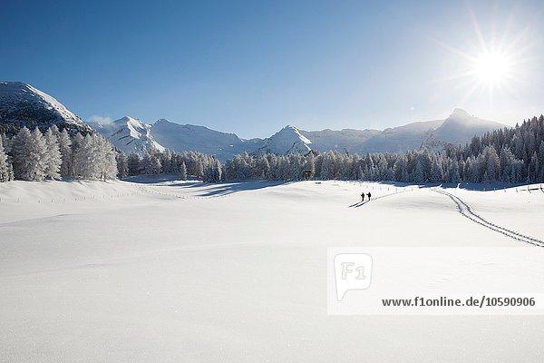 Bergkette  Bäume und Seniorenpaar weit weg auf verschneiter Landschaft  Sattelbergalm  Tirol  Österreich