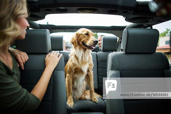 Junge Frau im Jeep mit Blick über die Schulter auf den Hund