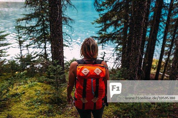 Hochwinkel-Rückansicht einer erwachsenen Frau mit orangefarbenem Rucksack im Wald mit Blick auf das Wasser  Moraine Lake  Banff National Park  Alberta Canada