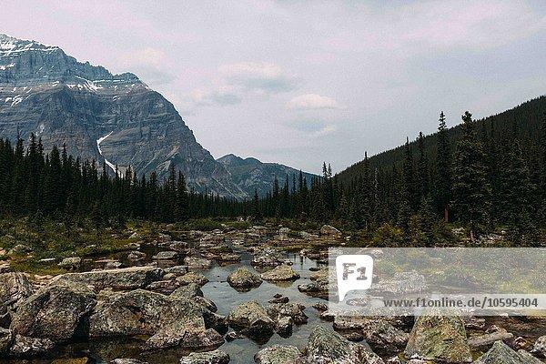 Felsiges Flussbett und Gebirge  Moränensee  Banff Nationalpark  Alberta Kanada