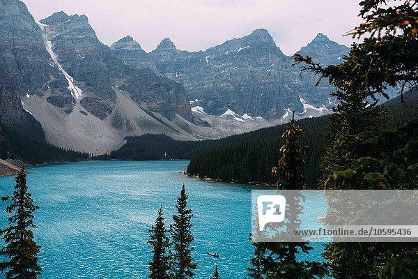 Erhöhter Blick auf den Moränensee unterhalb der Bergkette  Banff National Park  Alberta Canada
