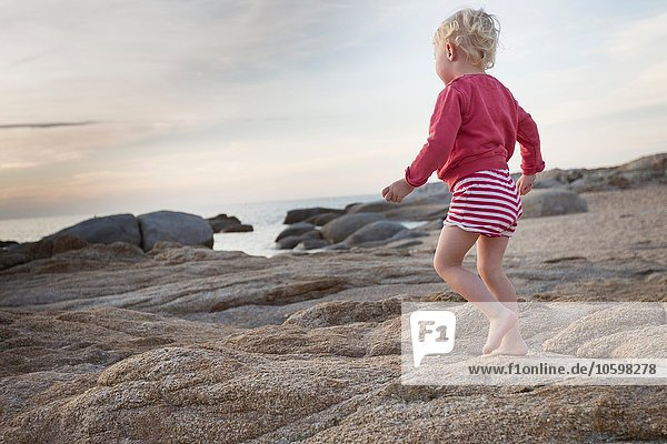 Female toddler toddling on coastal rock  Calvi  Corsica  France