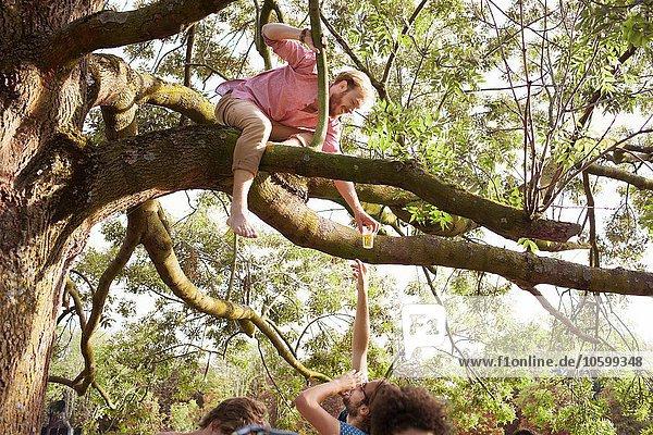 Junge Männer  die auf der Sunset Park Party einen Drink an einen Freund im Baum überreichen