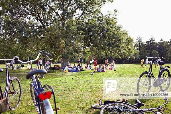 Gruppe von Freunden  die bei Sonnenuntergang unter einem Parkbaum feiern.