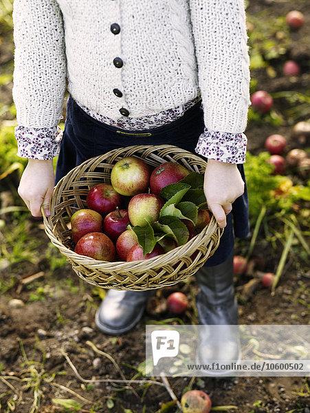 Korb Frucht halten Mädchen