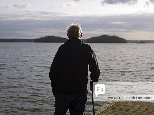 Rückansicht stehend Senior Senioren Mann Steg