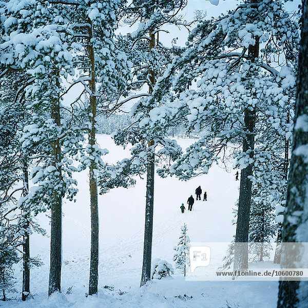 Winter Mensch Menschen gehen Silhouette Landschaft