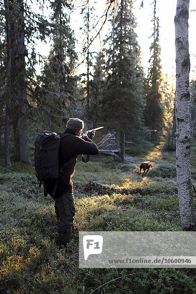 Hund Jagd