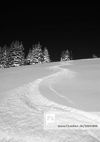 Ski Schnee