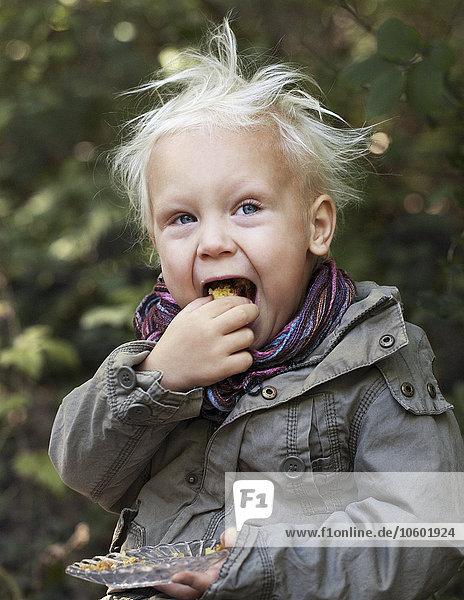 Boy eating sponge cake