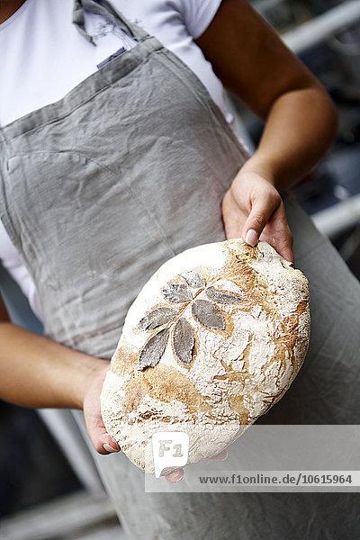 Muster Frische Brot Pflanzenblatt Pflanzenblätter Blatt halten Bäcker Schnittmuster