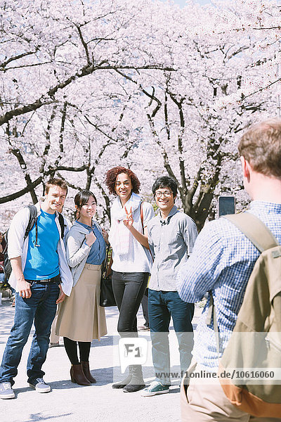 Fröhlichkeit Freundschaft blühen Kirsche multikulturell