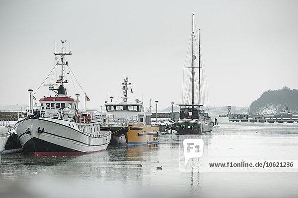Deutschland  Sassnitz  Fischerboote im Hafen im Winter